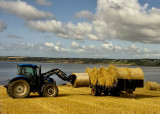 farming_scenes_