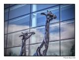 Metal Giraffes