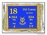 The 18th Tee