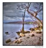 Loch Lomondside