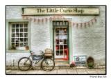The Little Curio Shop
