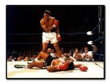 Muhammad Ali  (1942 - 2016)