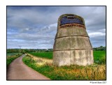 Road To The Doocot
