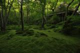 Kyoto -Vol.3-
