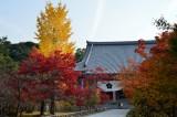 Chishaku-in Temple at Kyoto