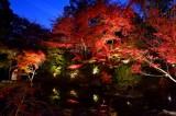 Nagaoka Tenman-gu Shrine at Kyoto