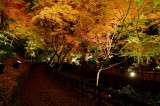 Kitano Tenman-gu Shrine at Kyoto