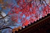 Konzo-ji Temple at Kyoto