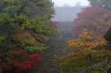 Jingo-ji Temple at Kyoto 2014