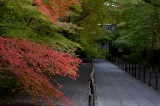 Komyoji-Temple at Kyoto 2014
