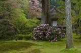 Kyoto -Vol.6-