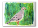 Summer Dove watercolor 9x12
