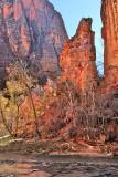 Canyon Glow