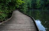 Powel Crosley Lake Wooden Walkway