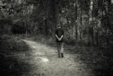 Strolling In Rowe Woods