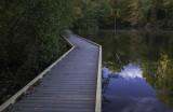 New View - Powel Crosley Lake Walkway
