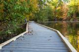 Powel Crosley Lake Walkway