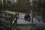 Lotus Pond Walkway Reconstruction