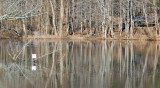 Powel Crosley Lake Spring 2014