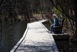 Ellen's Bench Powel Crosley Lake