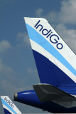 INDIGO AIRBUS A320S DXB RF IMG_8662.jpg