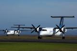 AIR NEW ZEALAND LINK DASH 8S AKL RF 5K5A9900.jpg