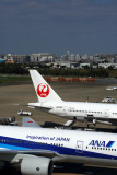 ANA JAPAN AIRLINES AIRCRAFT FUK RF 5K5A1000.jpg