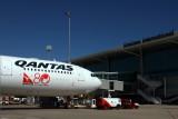 QANTAS AIRBUS A330 300 BNE RF IMG_8149.jpg