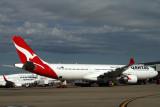 QANTAS AIRBUS A330 300 BNE RF IMG_9181.jpg