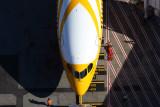 SCOOT BOEING 787 8 SYD RF 5K5A0184.jpg