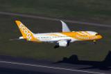SCOOT BOEING 787 8 SYD RF 5K5A0401.jpg