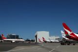 QANTAS BOEING 737 800s SYD RF IMG_9766.jpg