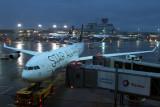 LUFTHANSA AIRBUS A340 300 FRA RF IMG_0139.jpg