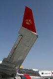 ROYAL JORDANIAN AIRBUS A330 200 DXB RF IMG_0252.jpg