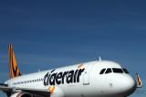 TIGERAIR AIRBUS A320 HBA RF IMG_0548.jpg