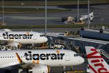 TIGERAIR VIRGIN AUSTRALIA AIRCRAFT MEL RF 5K5A6145.jpg