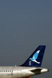 SATA INTERMATIONAL AIRBUS A320 LIS RF 5K5A8562.jpg
