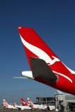 AIRCRAFT BNE RF IMG_1291.jpg