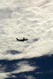 AIRBUS A330 200 SYD RF 5K5A0383.jpg