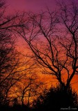 Red sky in the morning...