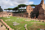 The Flavian Palace