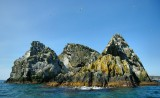 _DSC6301 - Shag Rocks, Trinity Bay