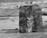 DSC07502 - Monolith