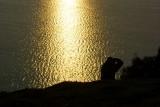 DSC02503 - Shooting the Sunrise