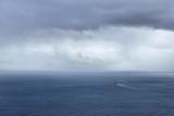 DSC05537 - The Atlantic Kestrel
