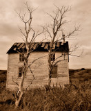 Abandoned House in Keels, Newfoundland**WINNER**