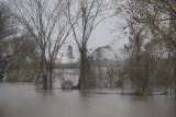 Flooding in southeast Louisiana