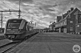 sista_tåget