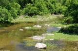 May 3rd 2011 - Stream - 2081.jpg