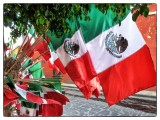 Viva México !!!